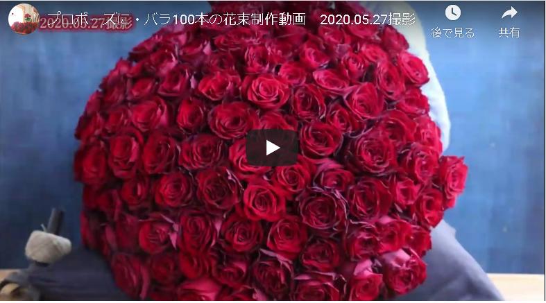 プロポーズに・バラ100本の花束制作動画 2020.05.27撮影