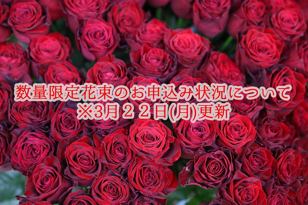 【3月22日(月)更新】 ◆数量限定花束のお申込み状況について◆