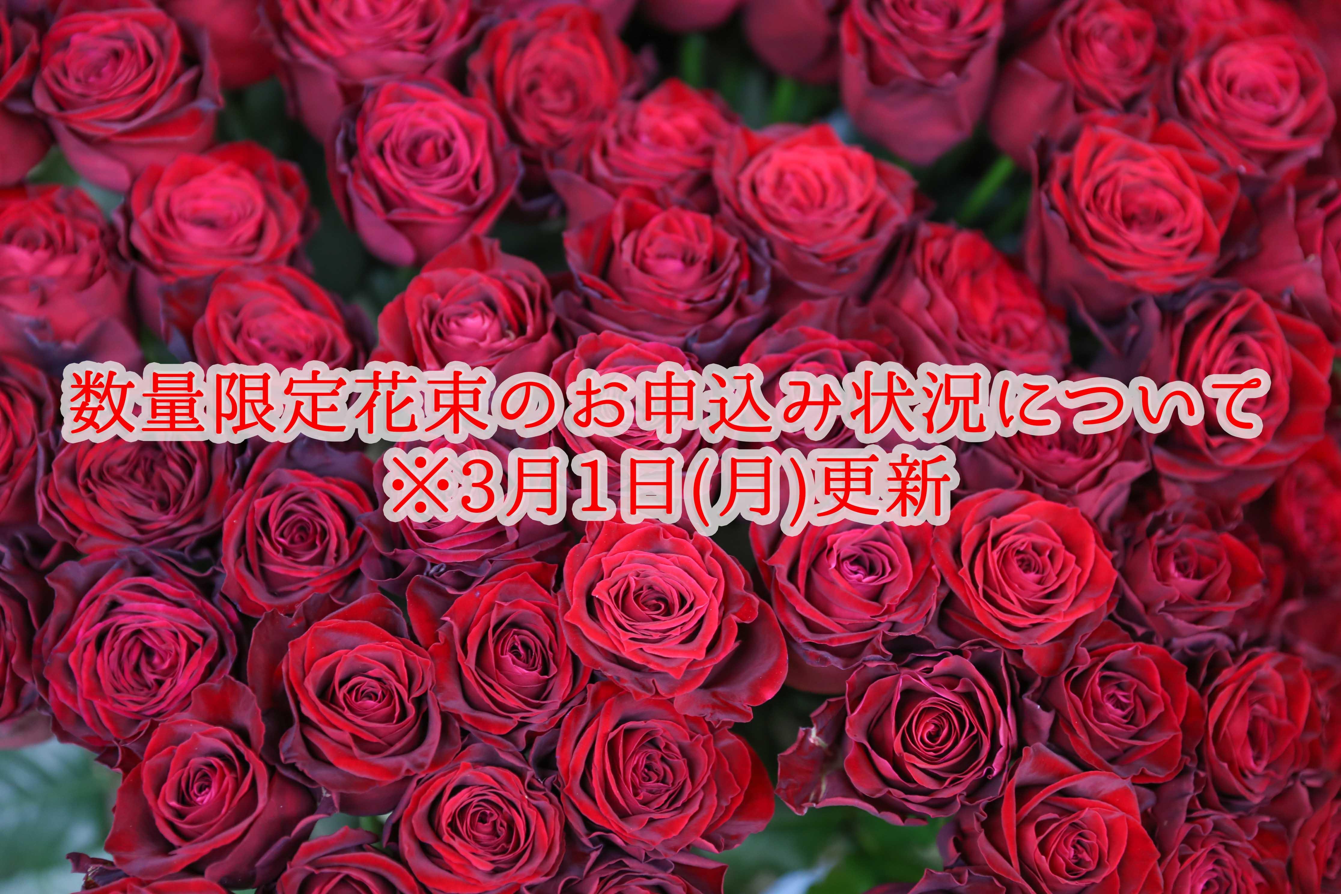 【3月1日(月)更新】 ◇数量限定花束のお申込み状況について◇