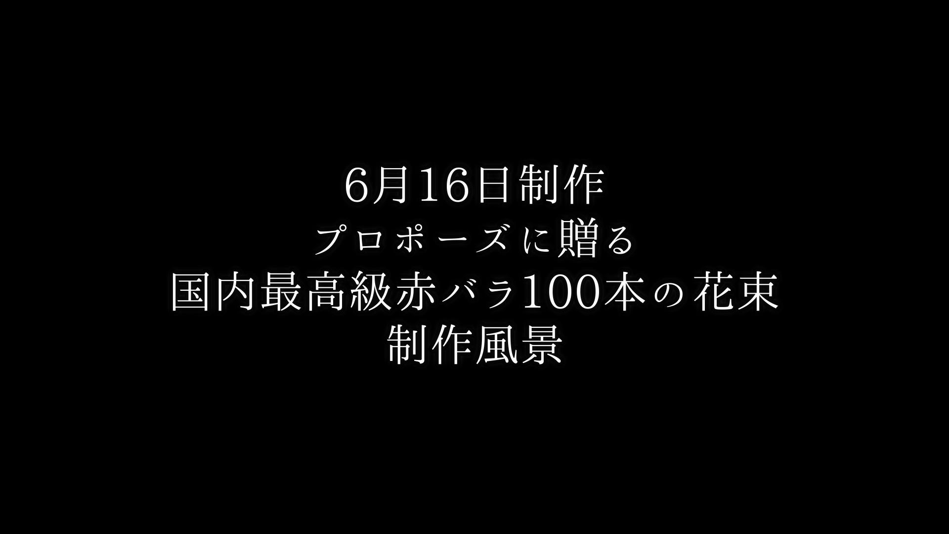 【プロポーズに贈る】最高級赤バラ100本の花束制作動画 2021/06/16撮影
