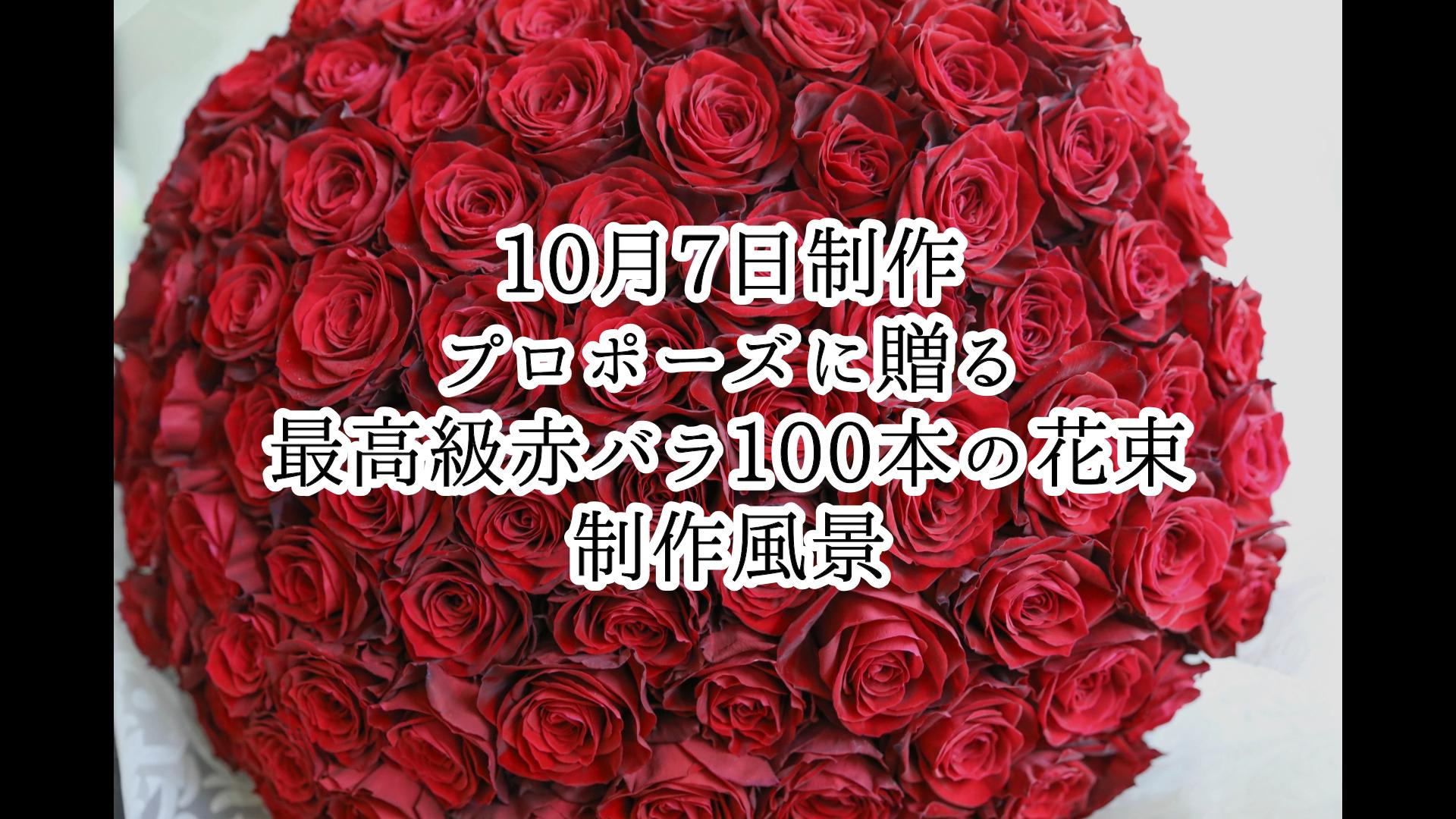 【プロポーズに】最高級赤バラ100本の花束制作動画 2021/10/07撮影