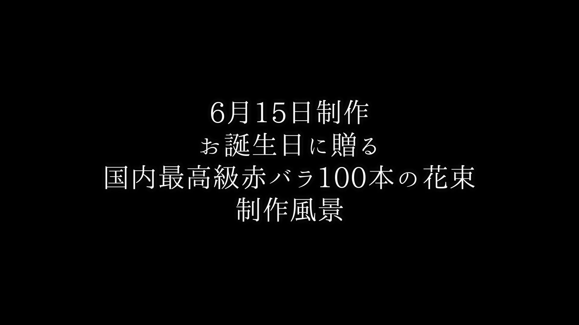 お誕生日に贈る・最高級赤バラ100本の花束制作動画【2021/06/15撮影】