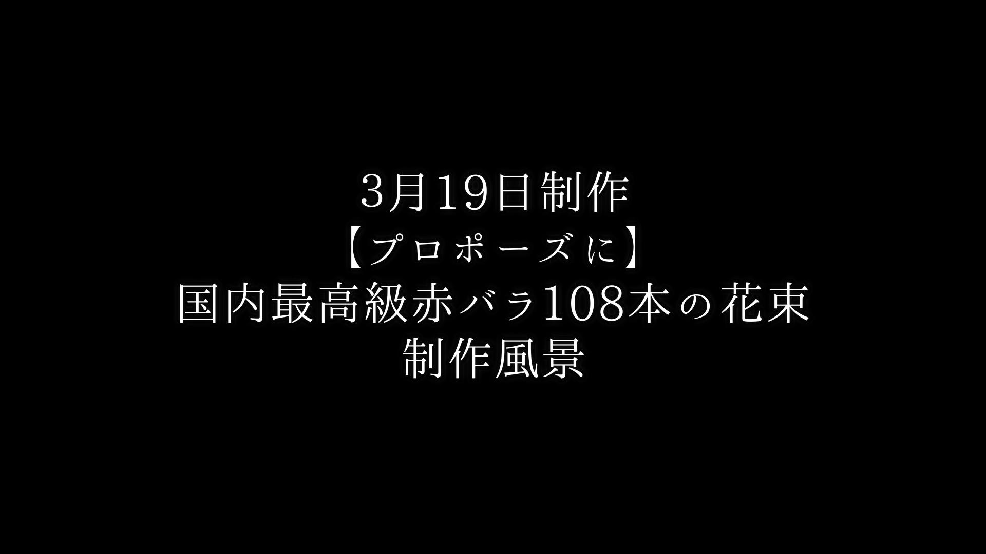 【プロポーズに】バラ108本の花束制作動画 2021/03/19撮影