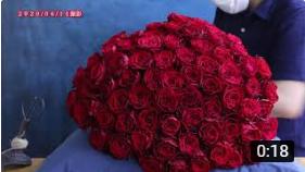 """""""奥様のお誕生日に贈る"""" 赤いバラ100本の花束制作動画ー2020.06.14撮影ー"""