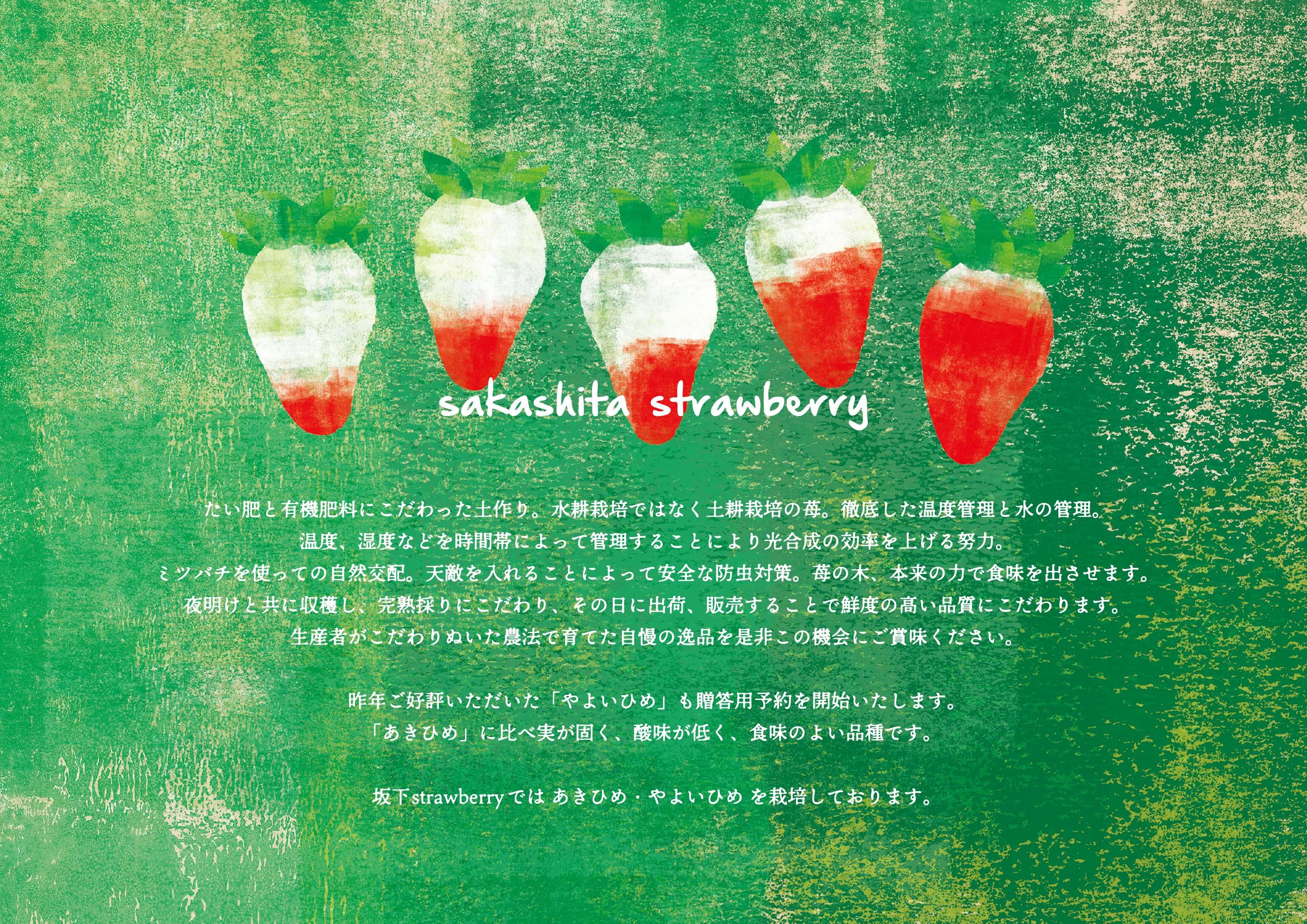 2020年度 坂下strawberry 11月中旬から予約受付スタート