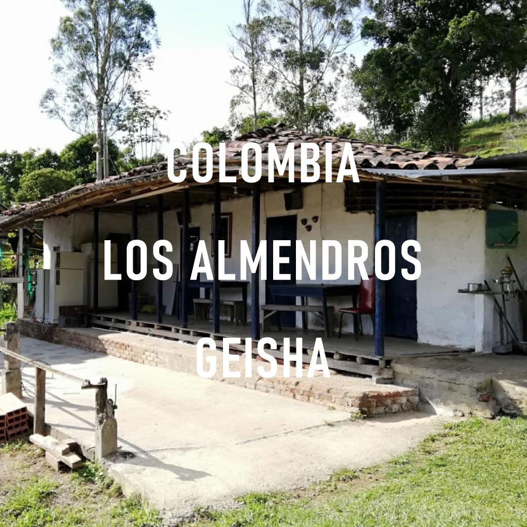 【新入荷】COLOMBIA LOS ALMENDROS GEISHA