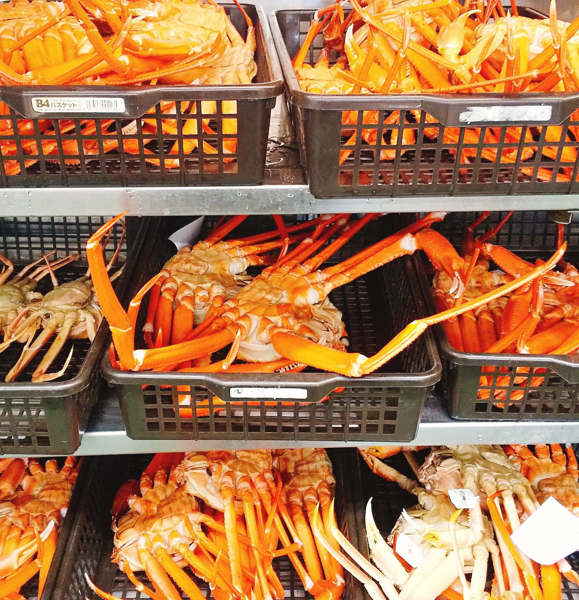 オンラインショップ紅ズワイ蟹 価格改訂のお知らせ