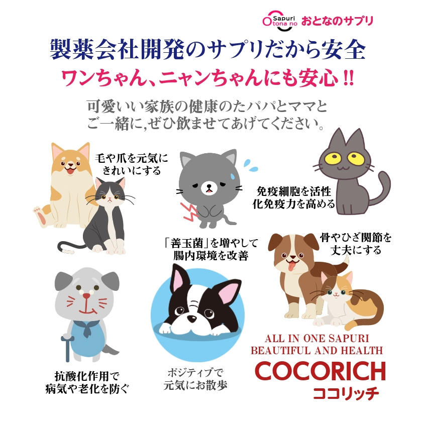 【獣医師からの健康注意点】ワンちゃんやネコちゃんの季節病⁈
