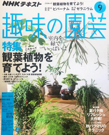 NHK「趣味の園芸テキスト」2018年9月号の観葉植物特集で店主の白田が誌上講師を担当しました