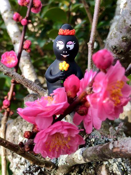 ひなまつり(Hinamatsuri/Doll's Festival)