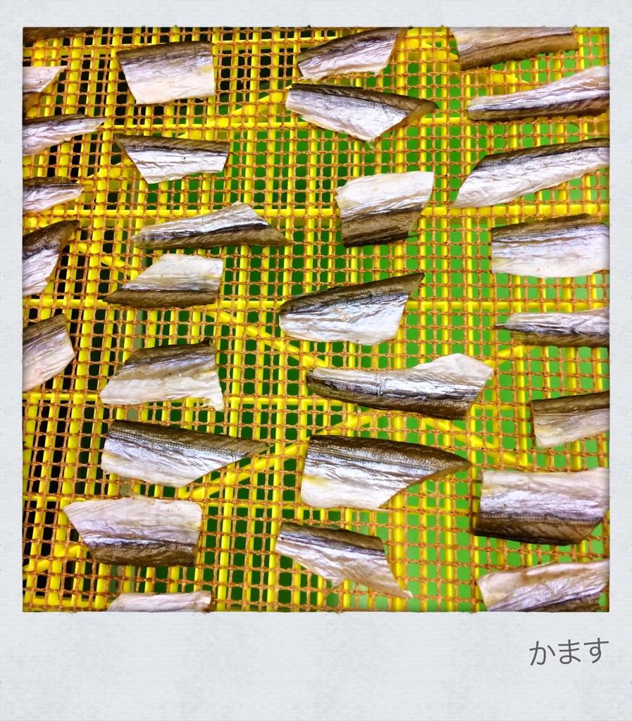 お魚ジャーキーかますの販売を再開しました。