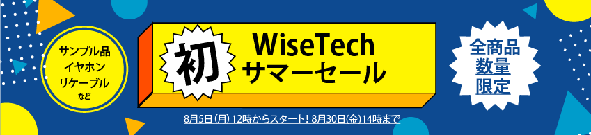 Wisetech summer event