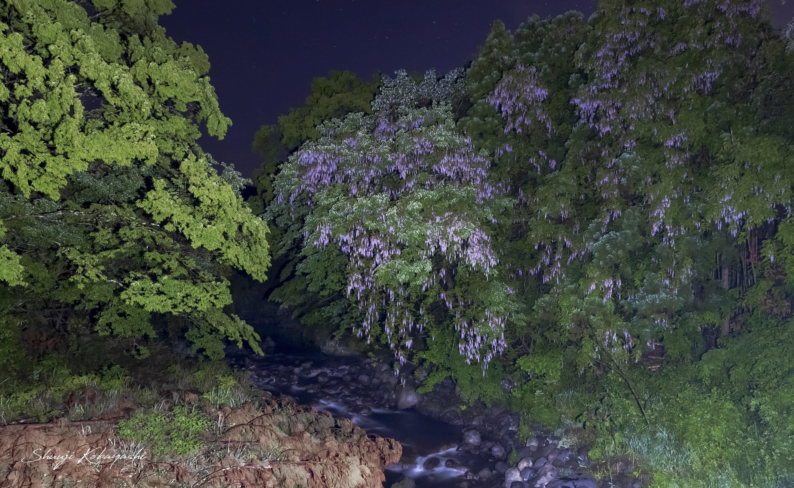夜の富士の話を撮影してきました。