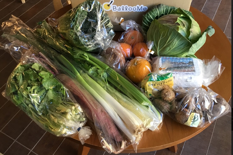 2019年2月(如月)『寒さ耐えつつ芽生えいづる野菜たち』