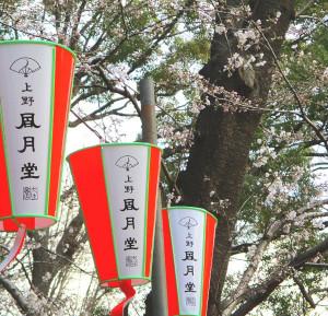 【ウワサの現場に突撃!!】上野動物園でうさぎさんは見られるのか!!??【See Or Not??】