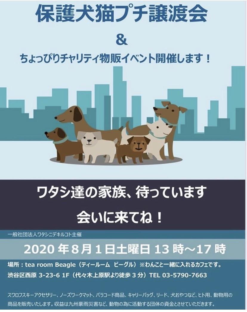 保護犬猫プチ譲渡会 in 代々木上原 開催のお知らせ