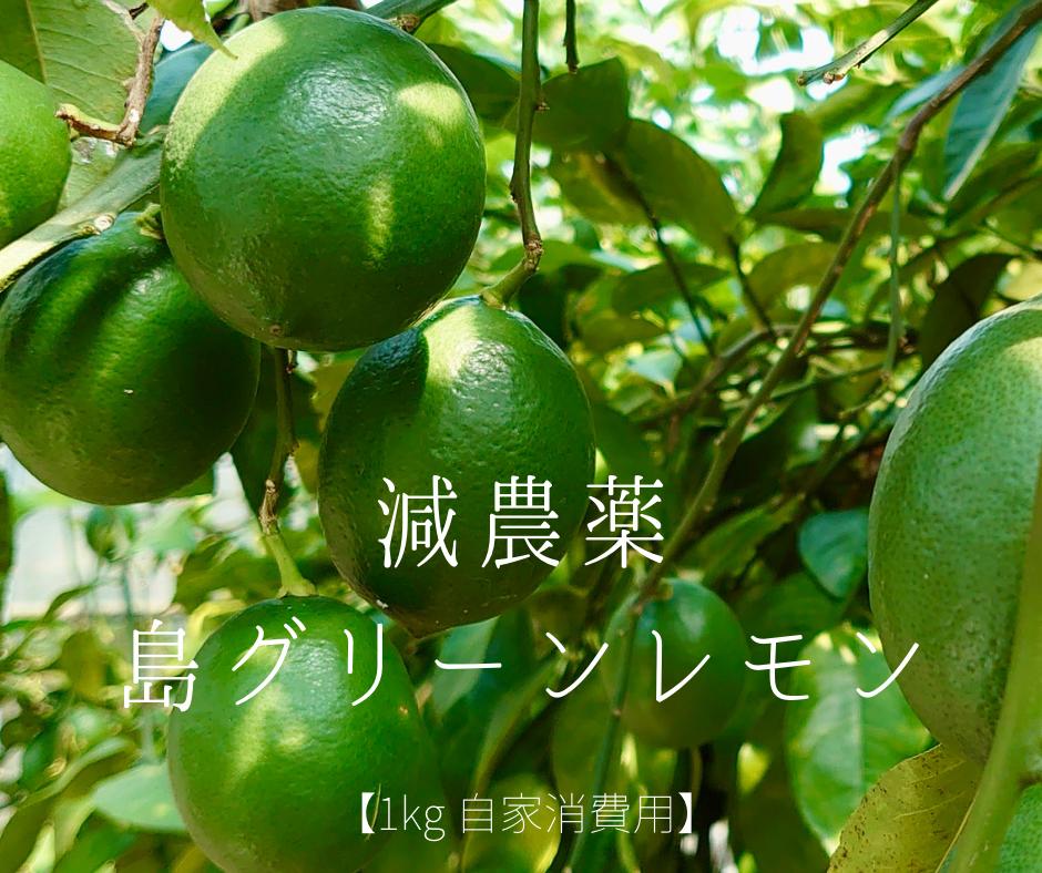 夏に国産レモンが登場!農薬を減らして栽培した島グリーンレモン