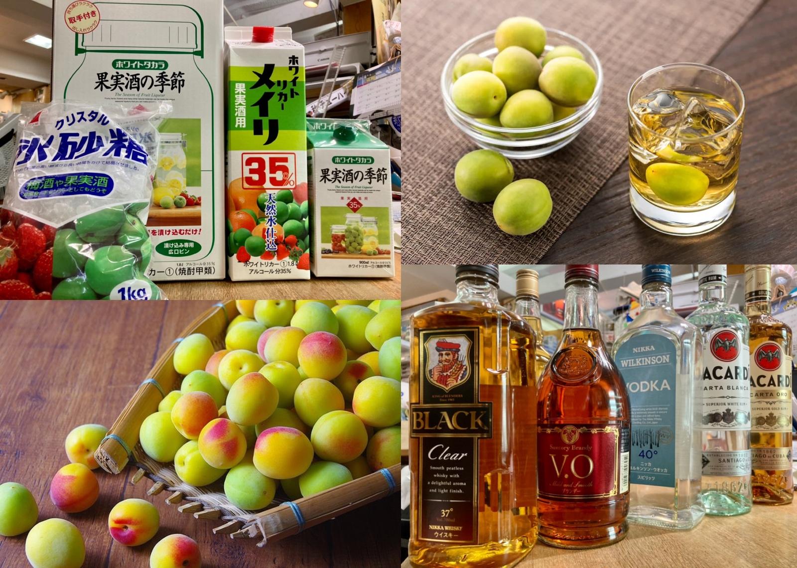 梅酒を漬ける時季ですね♪ 『今年の梅酒はアラカルトで如何(o^^o)?』