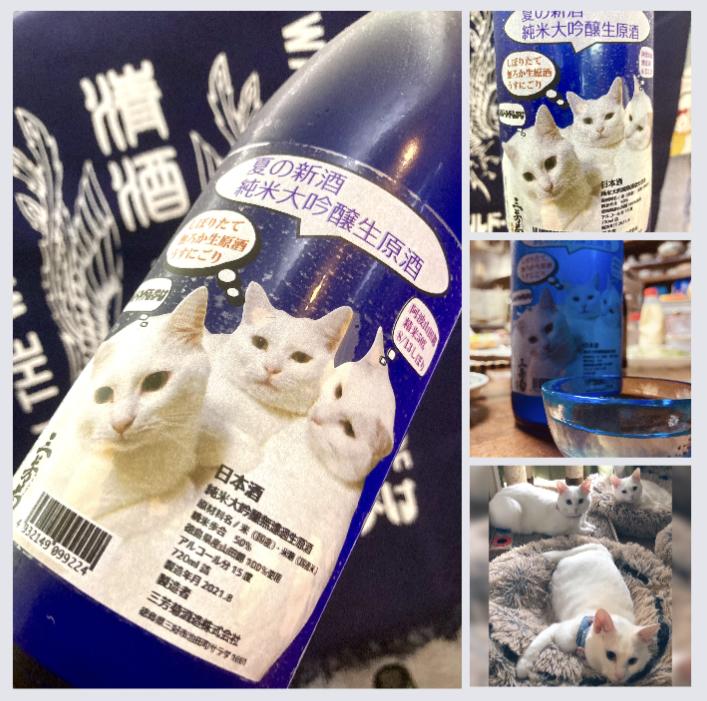 """""""ワイルドサイドを歩け‼︎"""" 『三芳菊 純米大吟醸 うすにごり〈白猫ラベル〉』"""