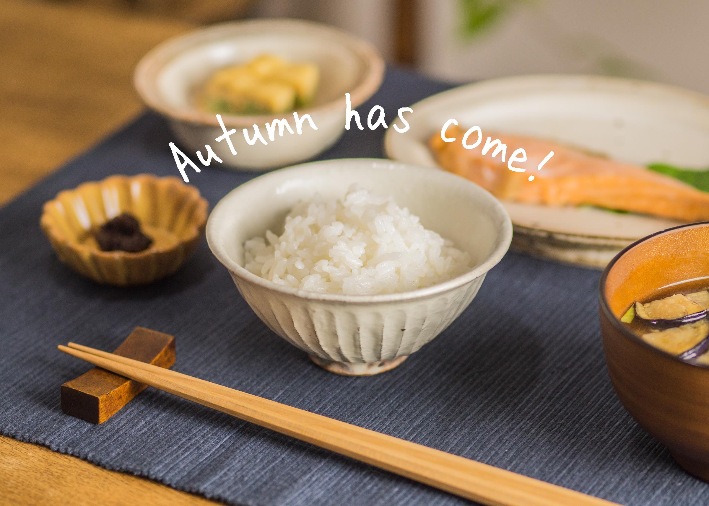 新米のご飯を食べるなら、粉引のご飯茶碗で食べてみませんか?