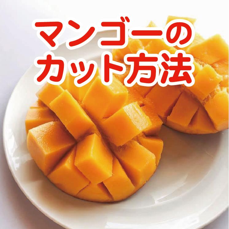 季節のフルーツカット/マンゴー/スイカ