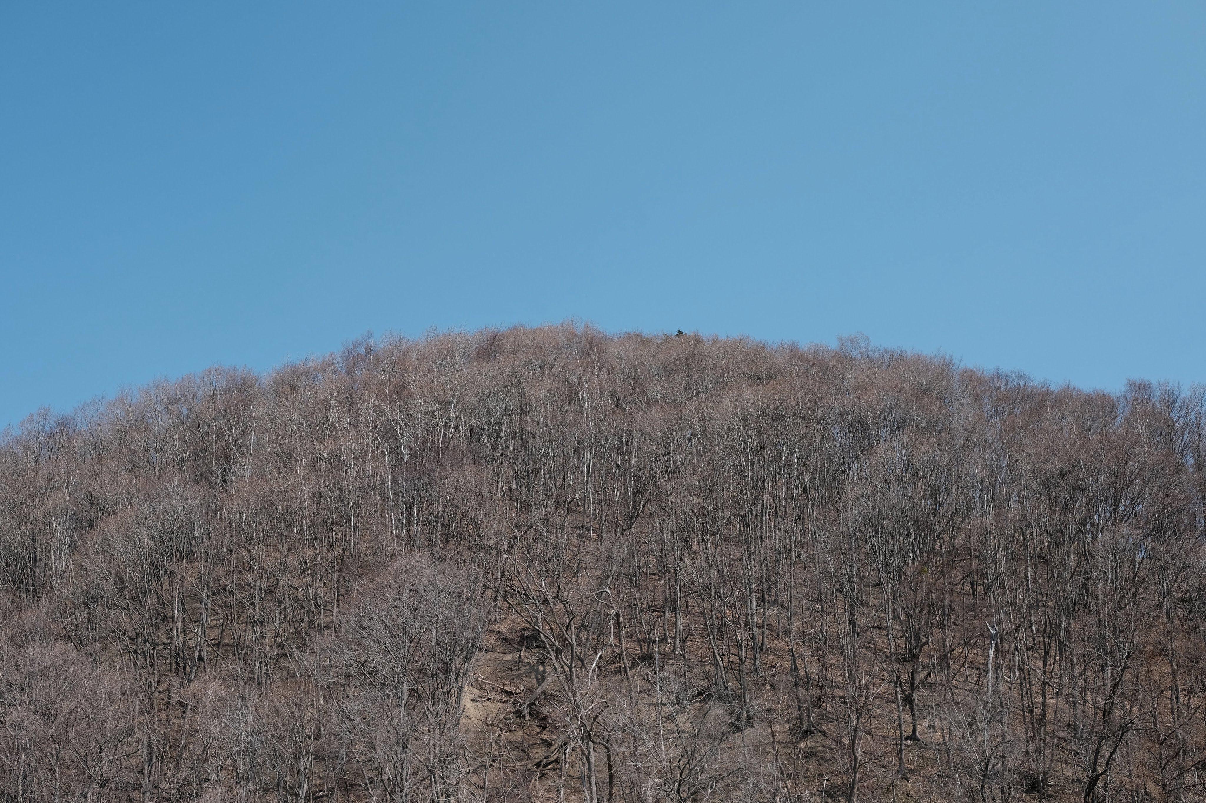 山の絵、山の写真
