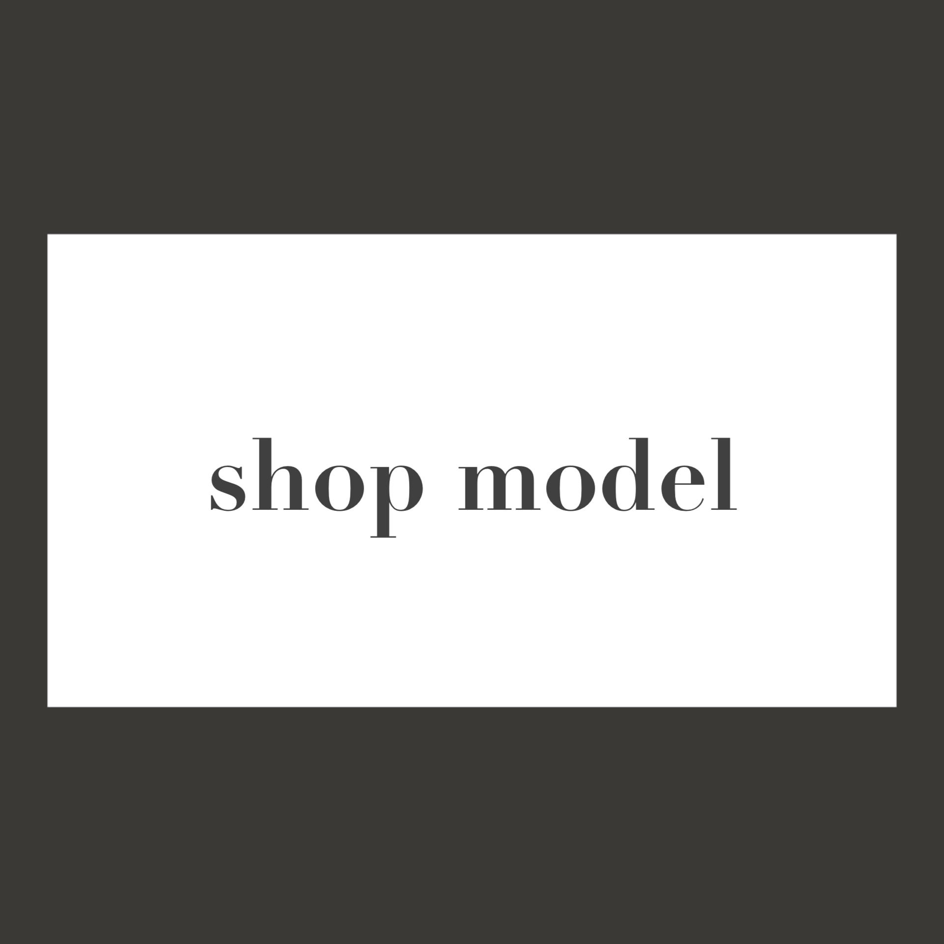 shop model service