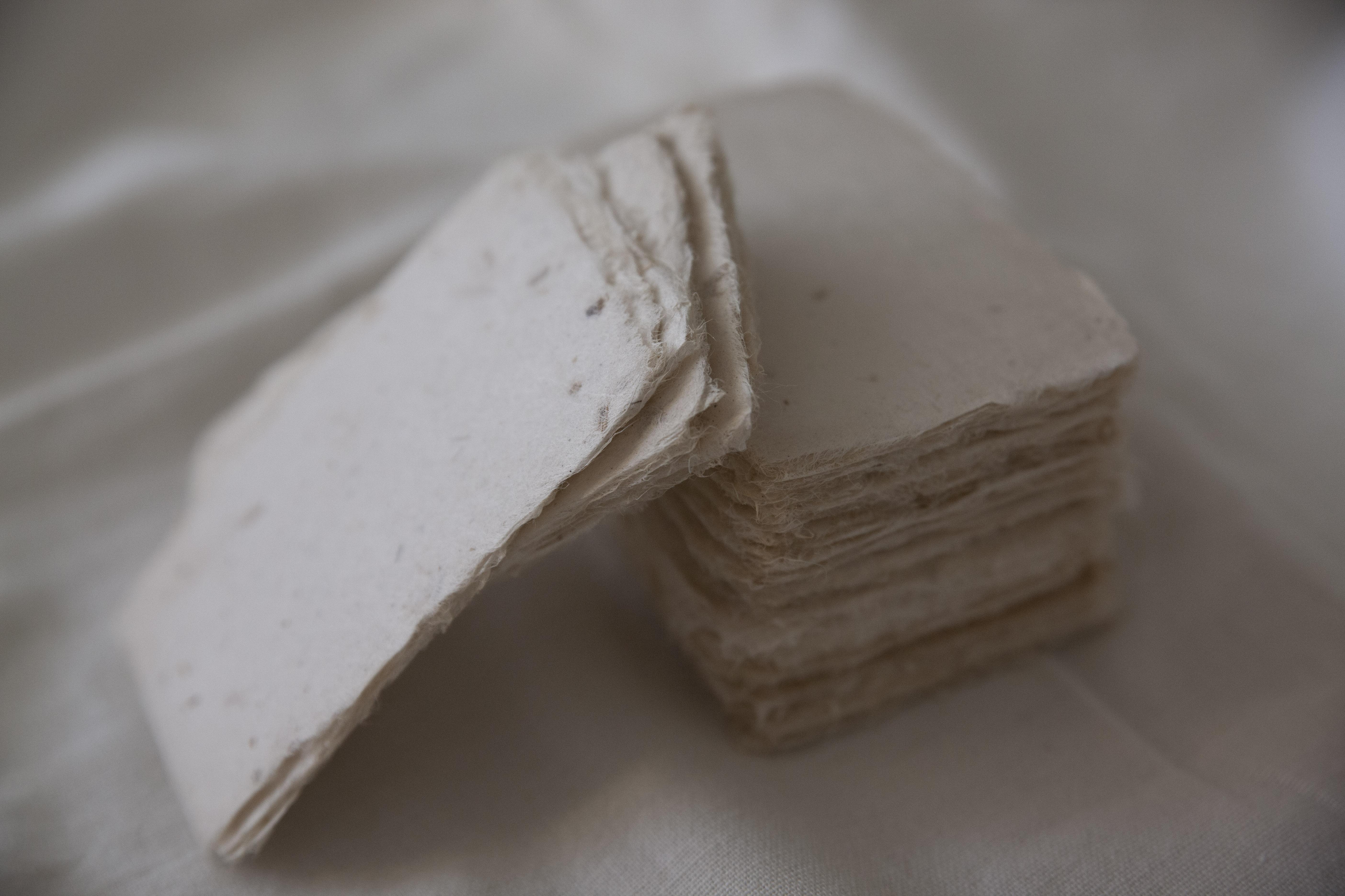 【新入荷】アップサイクルなカモミールの和紙名刺紙
