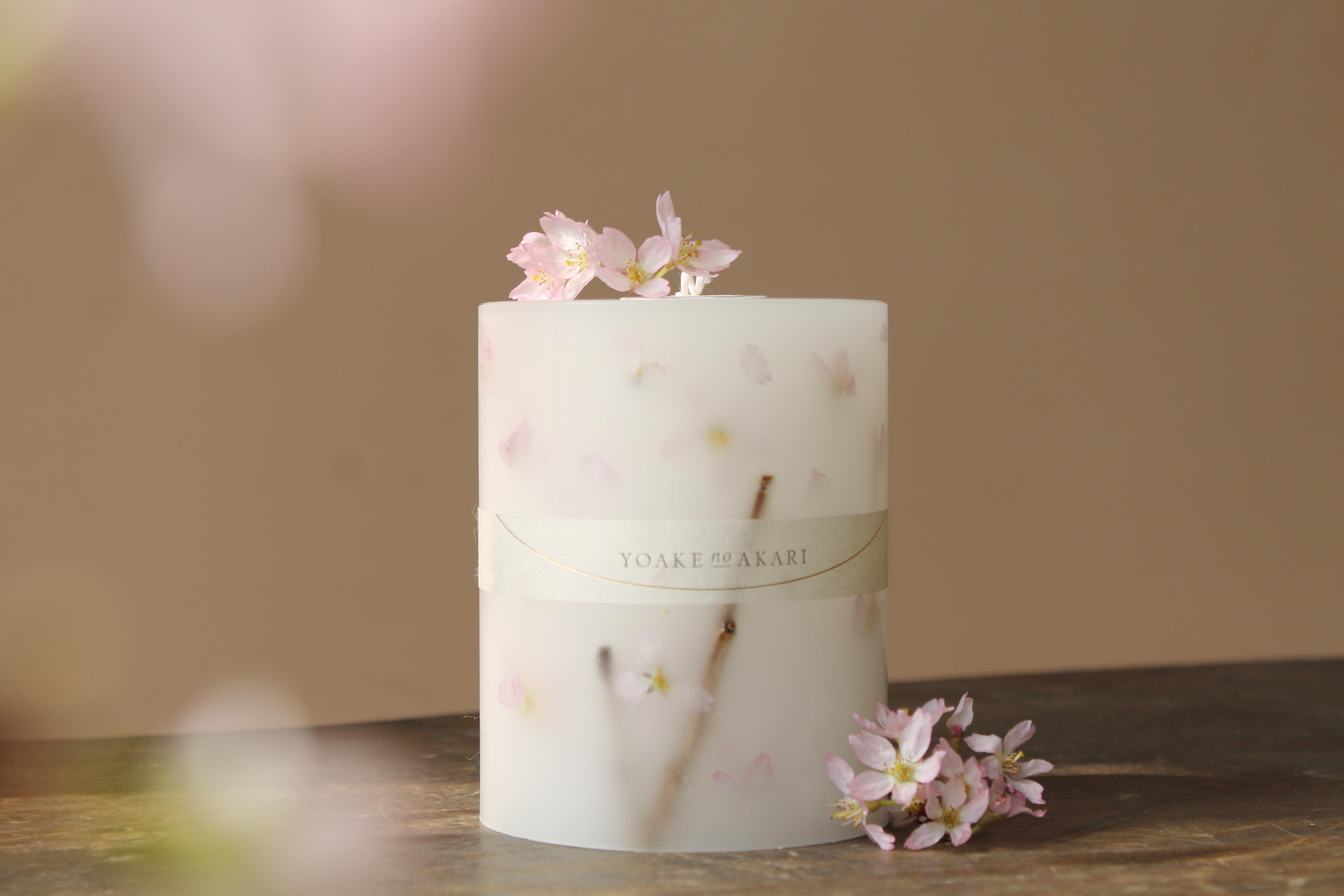 sakura Botanical candle 2021年分販売開始しました