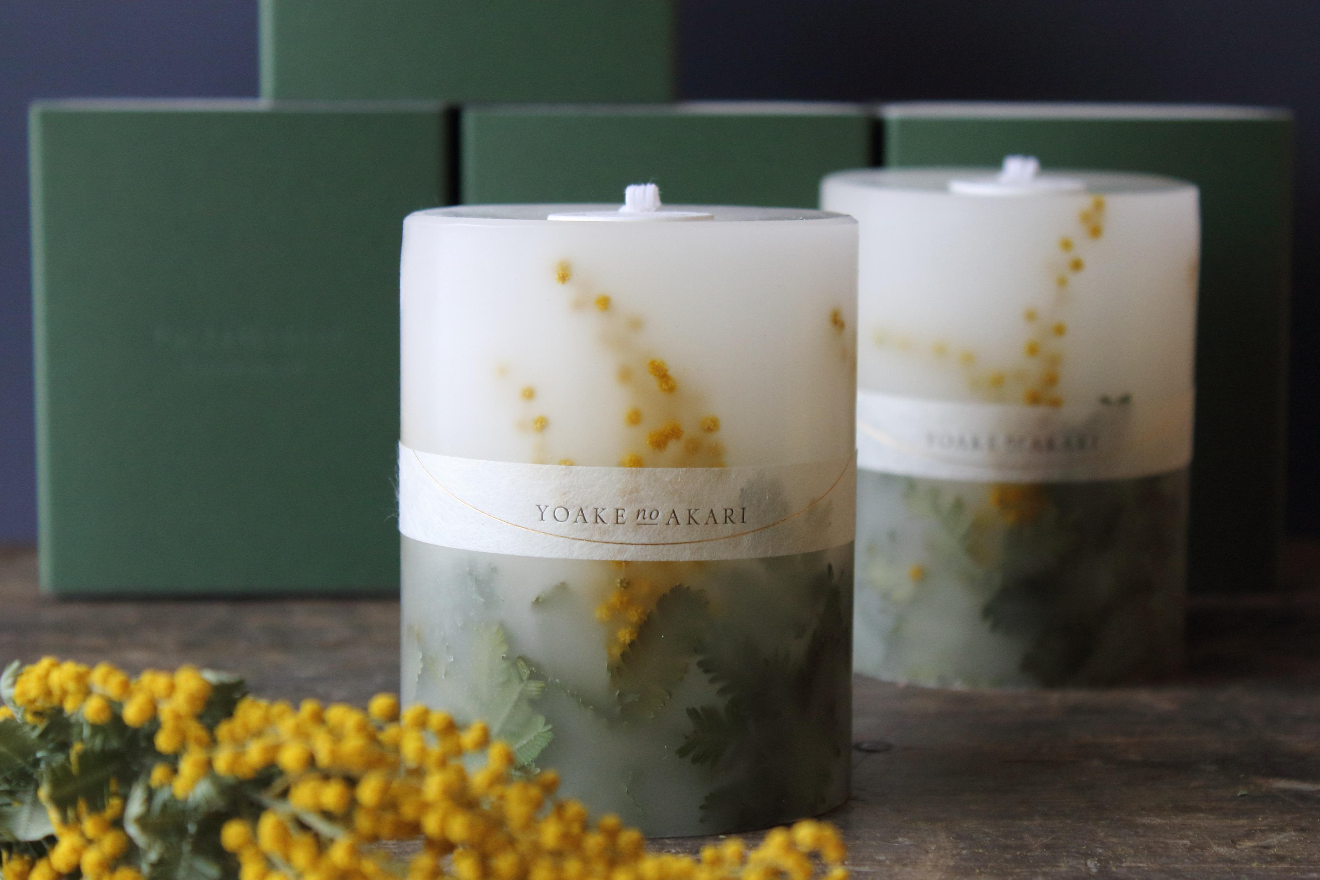mimosa Botanical candle 2021年分販売開始しました