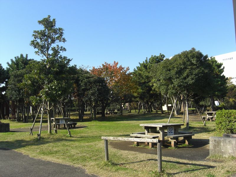 城南島海浜公園キャンプ場【 配達無料!】