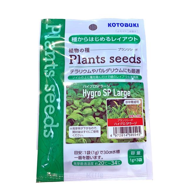 種をまくだけで緑の絨毯レイアウト #プランツシード