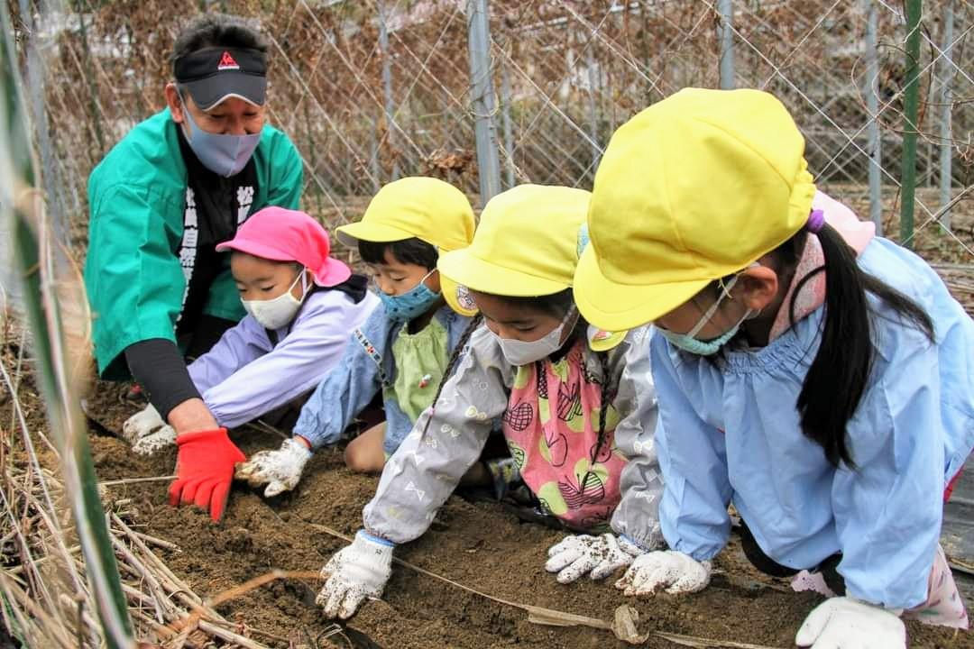 幼稚園児の「自然薯と背比べ」😆