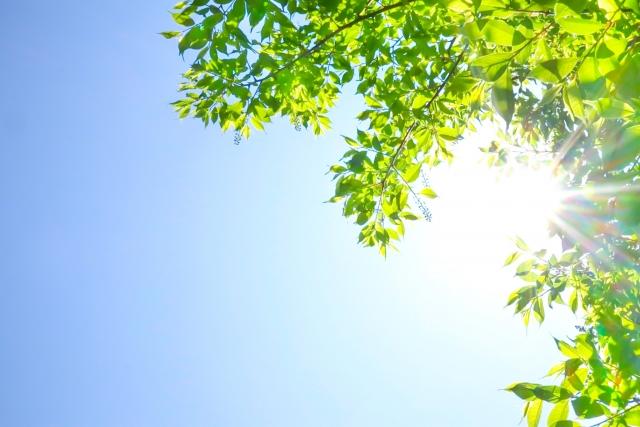 肌老化を防ぐ!紫外線対策 ~その1~