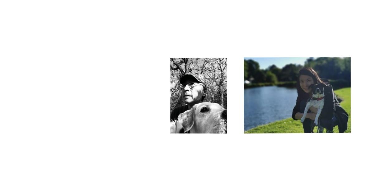 海外直輸入 犬用品のモダンドッグは、Team キタザワが厳選した安全安心の犬用品を取り揃えております