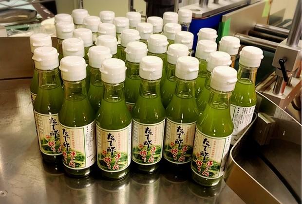 鮎の季節到来!今年初の着色料不使用(特許技術製法)のたで酢「手こね搾りのたで酢」を製造