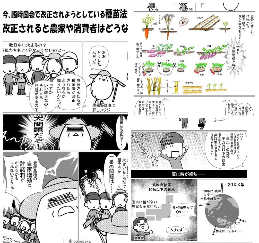 〜12月オンラインショップのお知らせ・ご注文商品と一緒に種苗法漫画お送りします〜