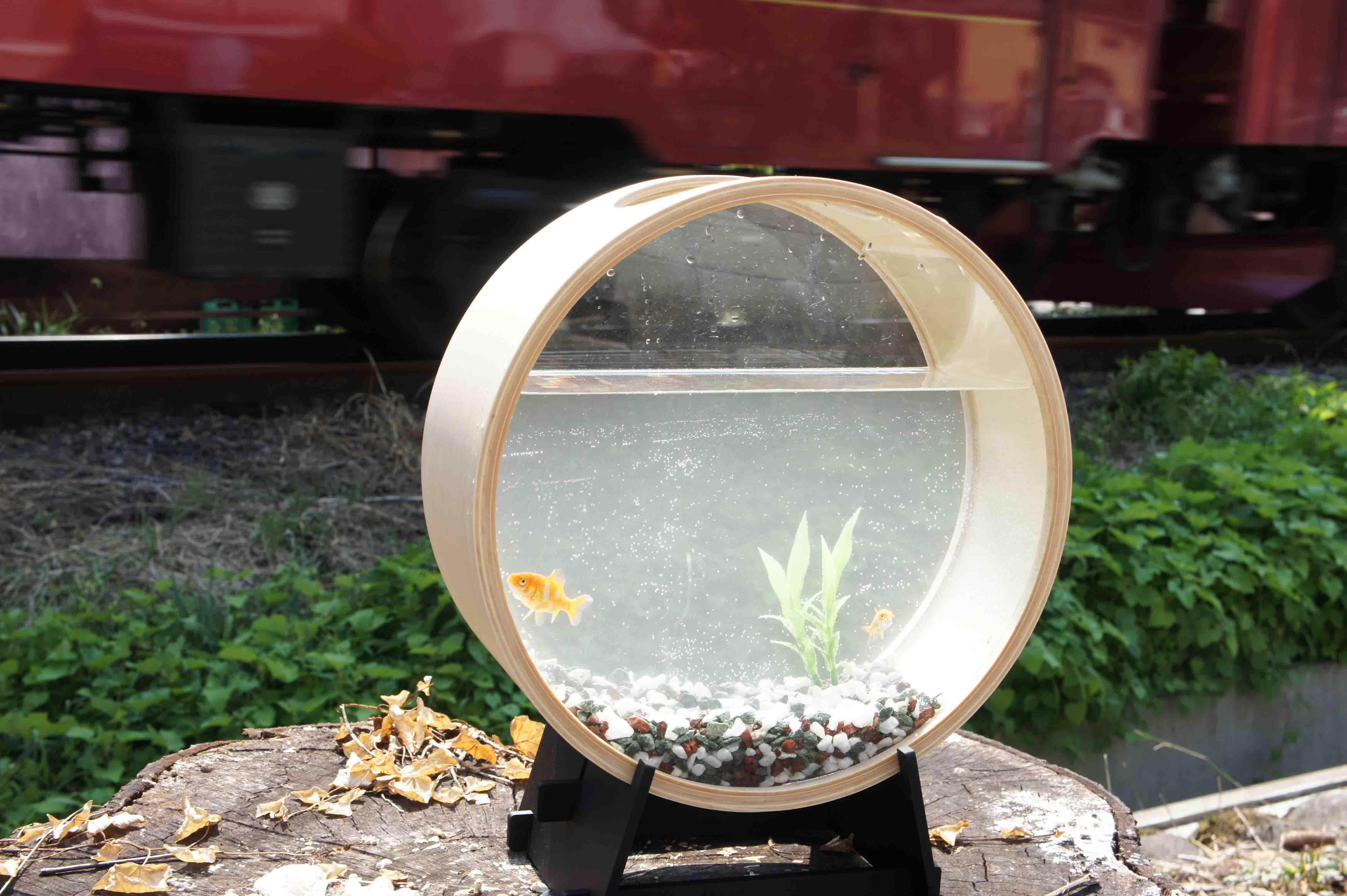 加藤木工の曲げわっぱ技術を使った水槽〜KATOMOKU Plywood aquarium〜