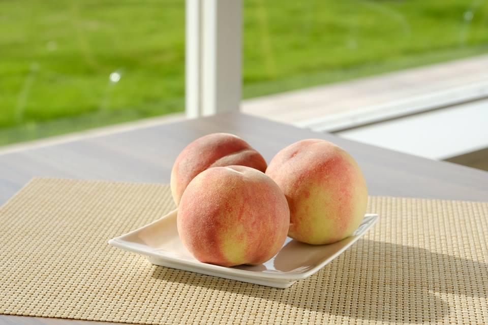 【ブログ】桃とお酢ではなく、桃のお酢なんです