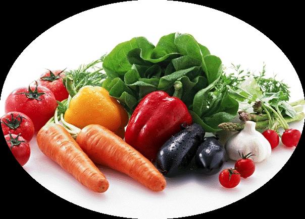 おまかせ旬の野菜&平飼い有精卵【7~8種類セット】宅配サービス【送料無料】