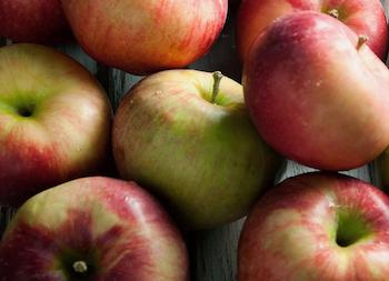 りんごの季節がやってきた!
