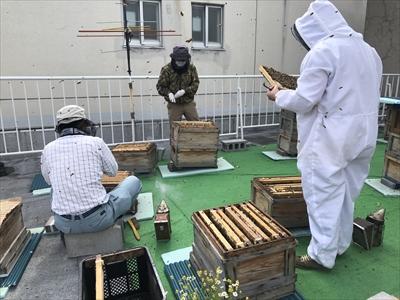 210625 ほのかにニセアカシアの香りがするハチミツ