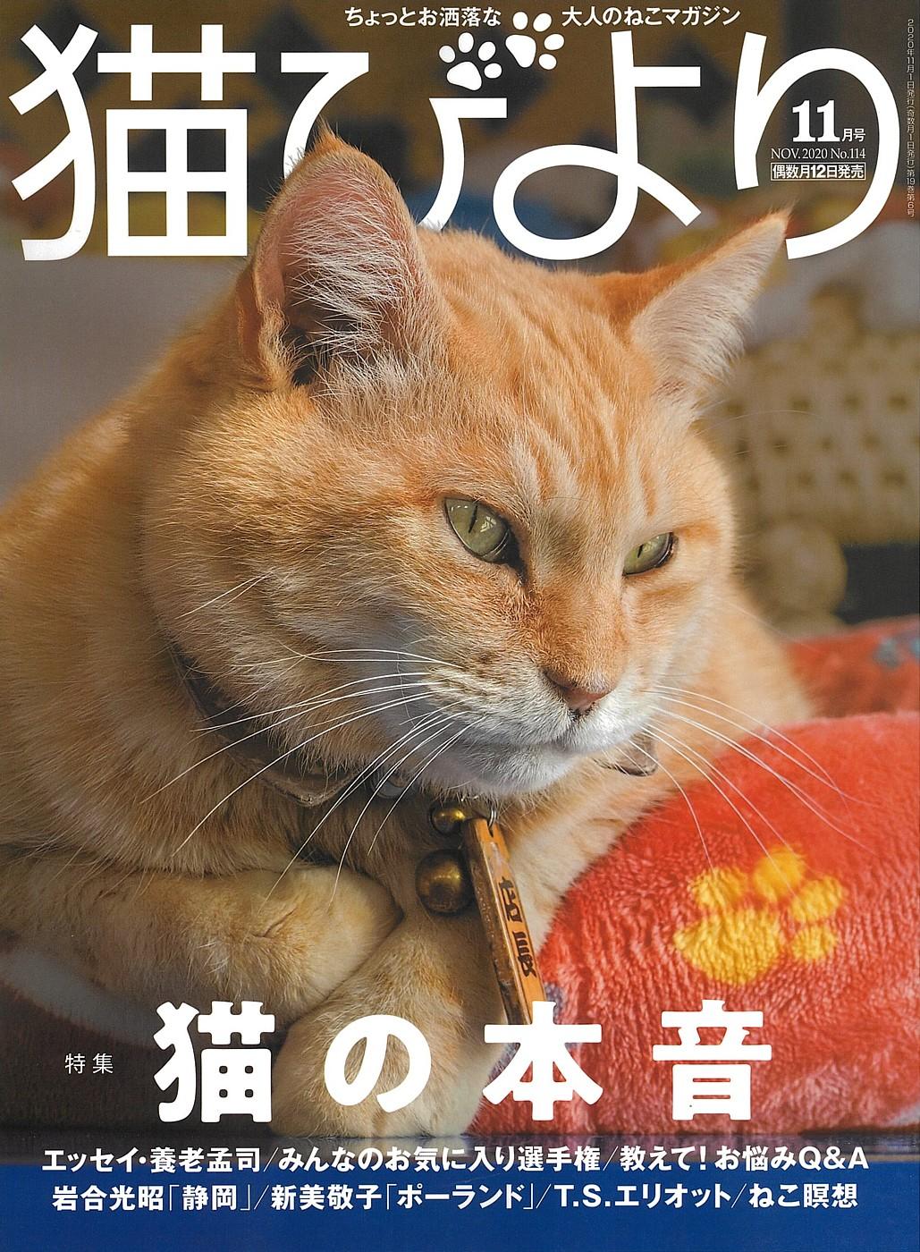 メディア情報 『猫びより』 2020年11月号No.114に掲載