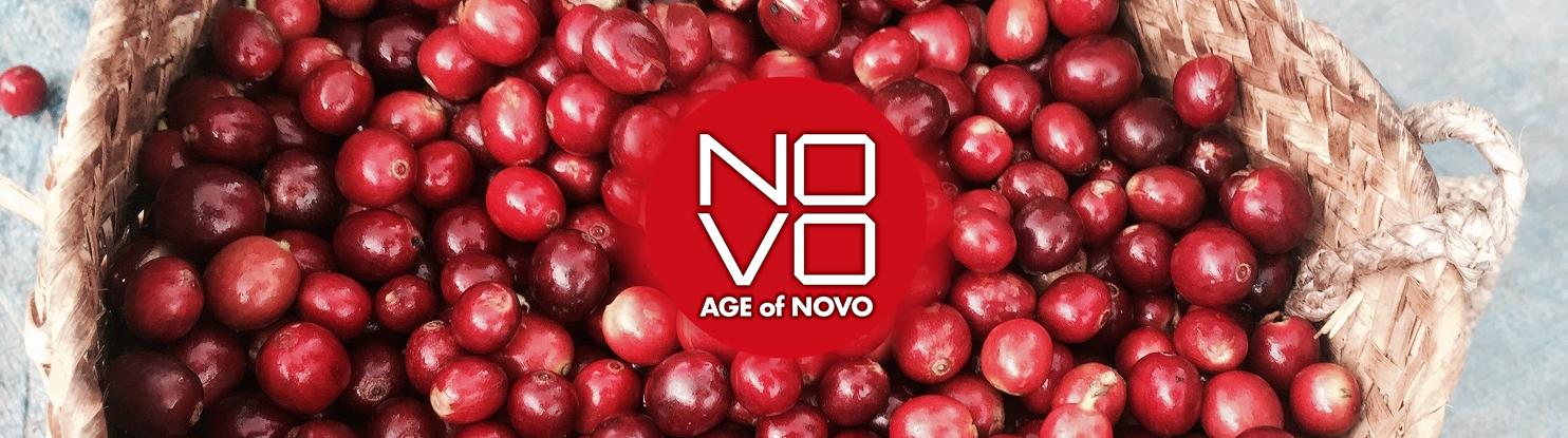 AGE of NOVO とは