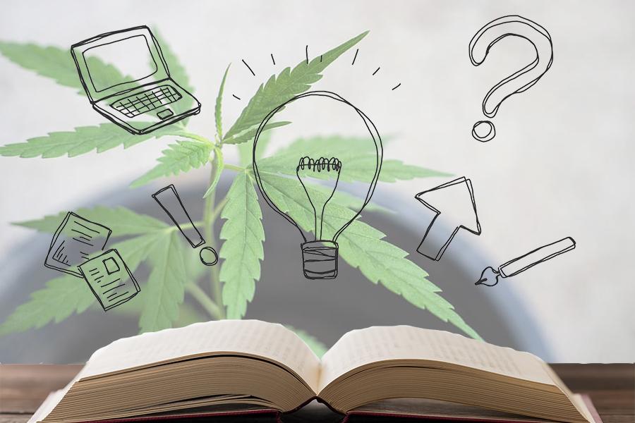CBDと大麻について知る!おすすめの本と動画