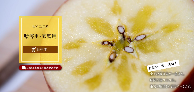 贈答用・家庭用りんごの販売を開始しました。