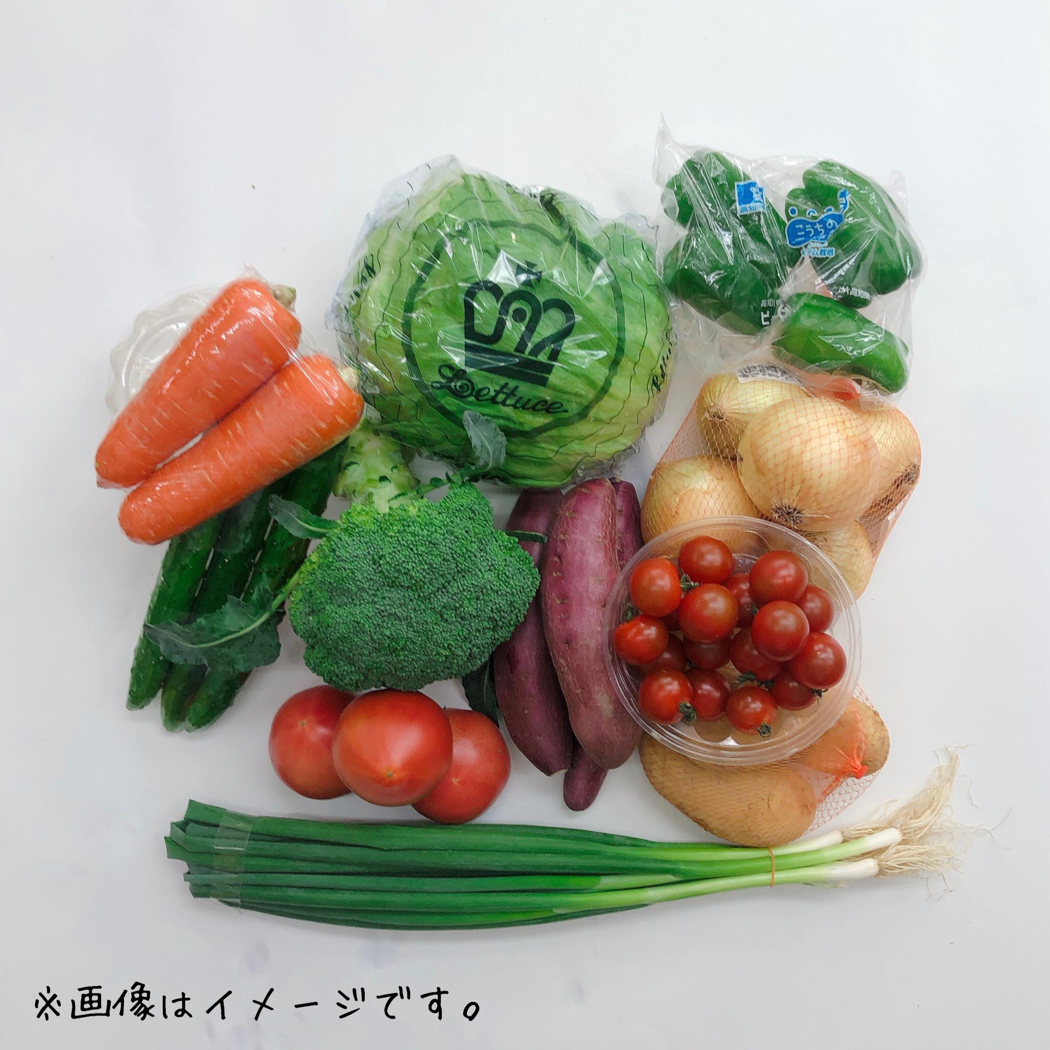 店長厳選☆旬のお野菜おまかせコース 始めました!