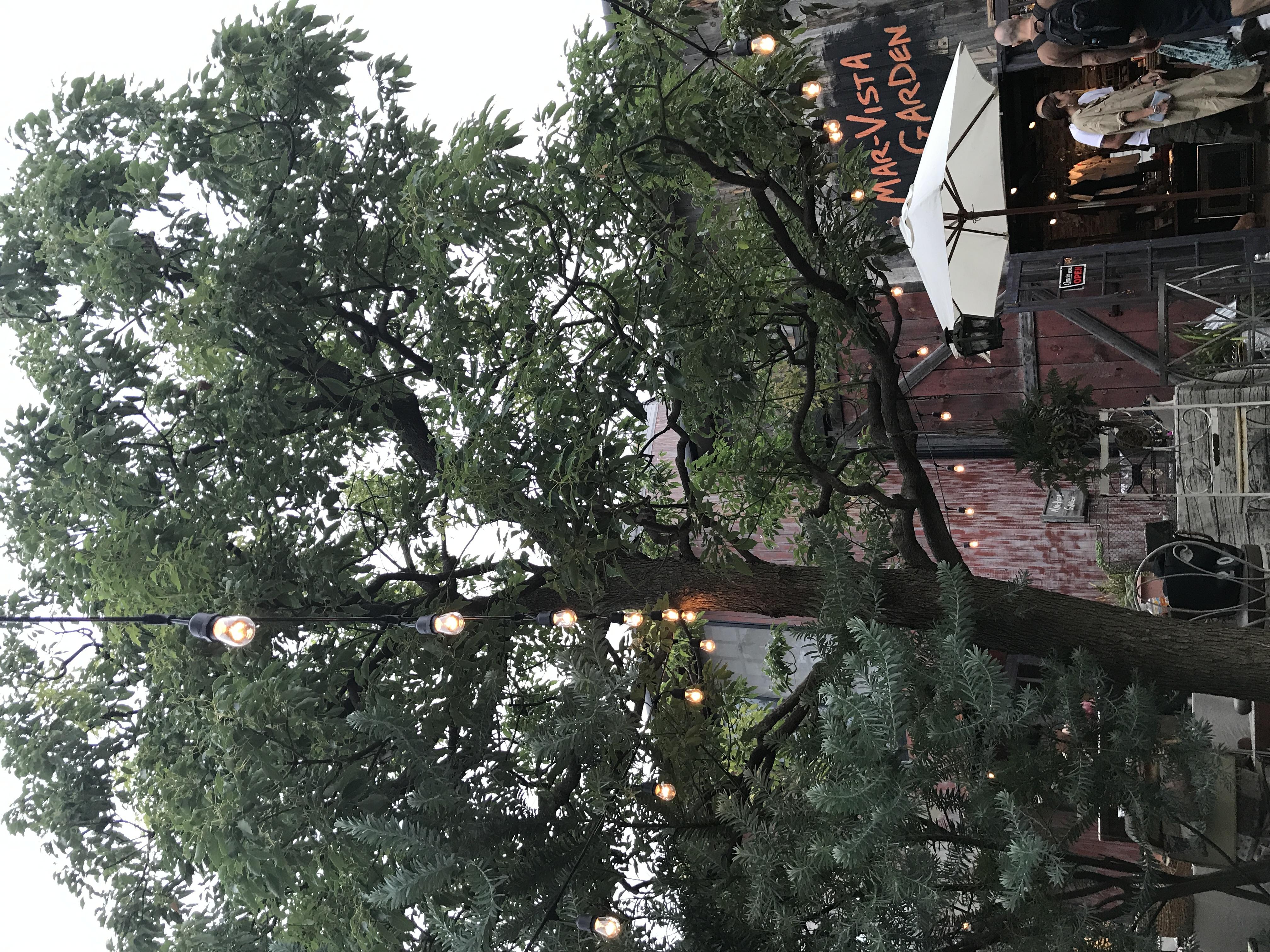 先日、marvistagarden茅ヶ崎さまにてイベントに参加致しました!