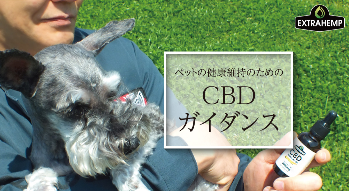 ペットの健康維持のためのCBDガイダンス