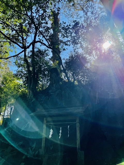 毘沙門天 地元の小さな神社
